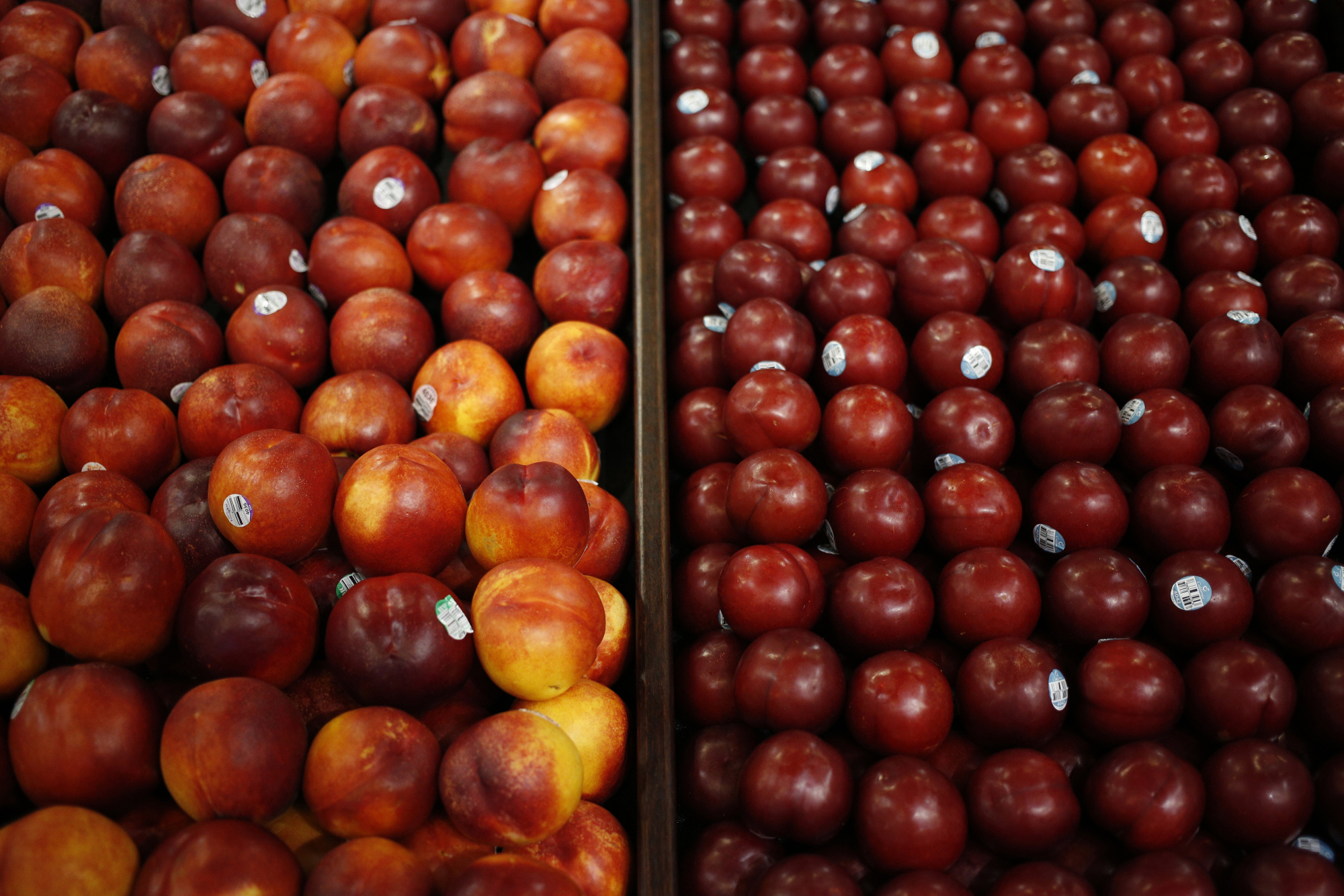 Nectarines are displayed for sale inside a Kroger Co. grocery store in Louisville, Kentucky, U.S., on Tuesday, Feb. 7, 2017. Photographer: Luke Sharrett/Bloomberg